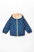 Куртка-вітрівка для дівчинки до 2 років, 5.10.15, синя