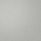 Alocasia Texture Cream