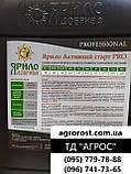 Стимулятор Роста для обработки семян Озимого Рапса АКТИВНЫЙ СТАРТ  гуматы, Аминокислотами, фото 4
