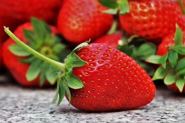 Чудо-ягодница «Домашняя грядка» — для выращивания клубники в домашних условиях