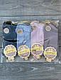 Шкарпетки котонові Sanbella жіночі з сердечками, ароматизовані 36-40 12 шт в уп мікс 4х кольорів, фото 3