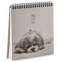 Блокнот Sketchbook Lazy days (BDK_17A063)