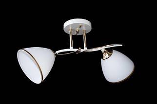 Люстра на 2 лампочки N 2509-2, фото 2