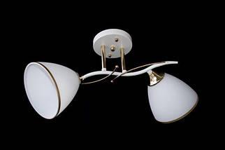 Люстра на 2 лампочки N 2509-2, фото 3