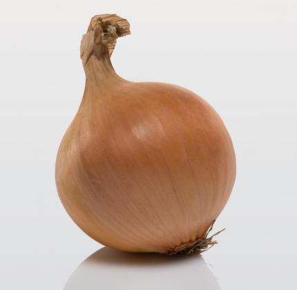 """Цибуля-сіянка """"Центуріон"""" ранній, округлий (Нідерланди), 1 кг"""