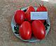 Семена томата Дино F1 \ Dino F1 1000 семян Clause, фото 8
