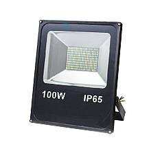 Прожектор светодиодный ЕВРОСВЕТ 100Вт 6400К EV-100-01  SMD