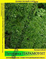 Семена петрушки «Парамоунт» 10 кг (мешок)