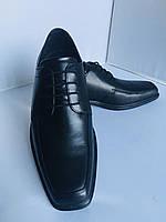 Мужские туфли Ecco, 45 размер, фото 1