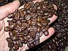 Обжаренный кофе Гардман