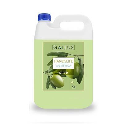 Жидкое мыло GALLUS 5л  Оливка, фото 2