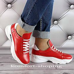 Женские кроссовки на шнуровке кожаные, красные   V 1285