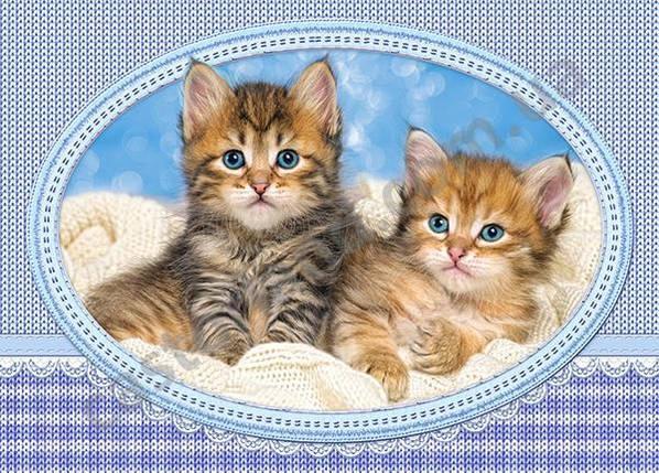 Пазлы Котята на одеяле на 120 элементов, фото 2