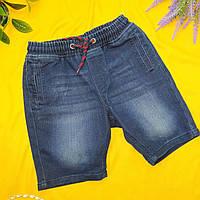Шорты подросток Pepperts (Германия) Рост 146-152 джинс синий, фото 1