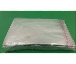 Пакет С липкой лентой 17см 22,5 см 25мк  (1000 шт)