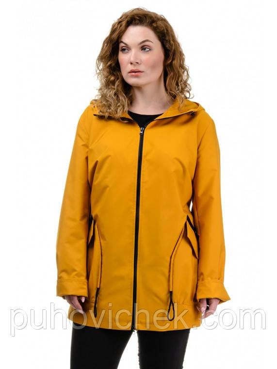 Куртка жіноча з капюшоном великі розміри інтернет магазин розміри 62,64