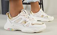 Женские кожаные кроссовки, белые с золотом, код FS-5106