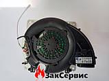 Вентилятор Ferroli с горелкой в сборе 39846061, фото 8