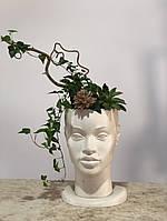 Скульптурне кашпо, кашпо з бетону, скульптурний горщик для вазону, фото 1