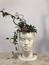 Скульптурне кашпо, кашпо з бетону, скульптурний горщик для вазону