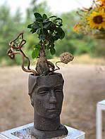 Горшок для вазона, скульптурний вазон, кашпо з бетону, фото 1