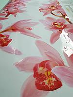 Наклейка на шкаф-купе с цветами орхидеи 100 х 240 см