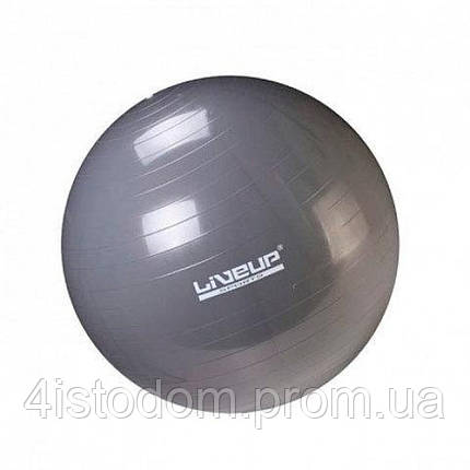 Фитбол GYM BALL 75см LS3221-75g, фото 2