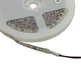Led лента 12ВClass A - MOTOKO SMD 3528,120диодов, в упаковке 5м ленты, холодный белый свет7000-8000К, фото 2