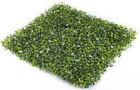 Декоративное зеленое покрытие Фитостена Самшит с цветком 50х50 см
