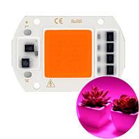 Светодиодная фито матрица с драйвером COB LED 50Вт 220В фитосветодиод