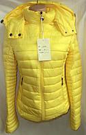 Куртка женская синтепон капюшон