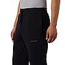 Мужские штаны Columbia M Columbia Logo Fleece, фото 3