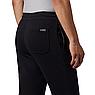 Мужские штаны Columbia M Columbia Logo Fleece, фото 5