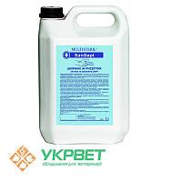 Дезинфицирующее средство на спиртовой основе SanSept 5 л