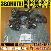 Ремкомплект дифференциала КАМАЗ моста заднего (в упаковке) (пр-во КамАЗ) (арт. 53205-2403081)