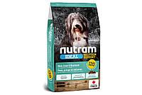 Сухой корм I20 Nutram Ideal Solution для взрослых собак с проблемами кожи, шерсти или желудка 20 кг
