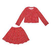 Костюм Sofushka (юбка+жакет) 0472 разноцветный