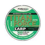Леска Kalipso Titan Force Carp GR 300м 0.25мм, фото 2
