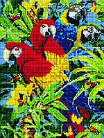 Алмазная вышивка. Яркие попугаи, 40*30