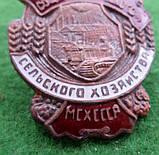 Отличник соц.соревнования Министерство сельского хозяйства МСХ СССР  1947г. копия, фото 2