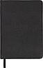 Ежедневник недатированный AMAZONIA A6 BM.2612 Buromax