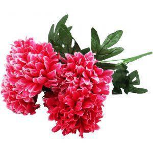 Квіти декоративні