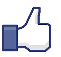 Не забываем лайкать Л.М. на facebook