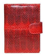 Портмоне для денег и документов из кожи змеи SN 9001 Fire red