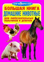 Большая книга. Домашние животные для любознательных мальчиков и девочек. Мир вокруг нас