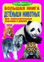 Большая книга. Детёныши животных для любознательных мальчиков и девочек. Мир вокруг