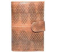 Визитница из кожи морской змеи.EXCLUSIVE SNCH 18-1 Tan