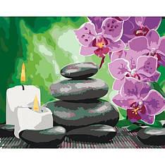 Картина по номерам Камни и цветы Идейка 40x50см