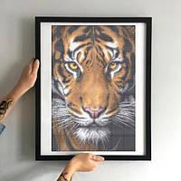 Картина Тигр ЗПТ-015