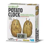 Набор для творчества 4M Картофельные часы (00-03275)